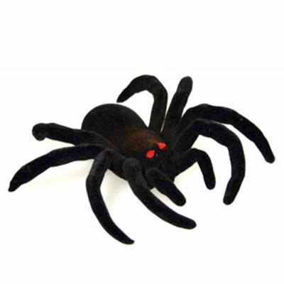 Geocache pavouk - komplet včetně nanocache - 1
