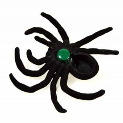 Geocache pavouk - komplet včetně nanocache - 2