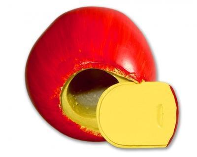 Geocache jablko - komplet včetně microcache - 2